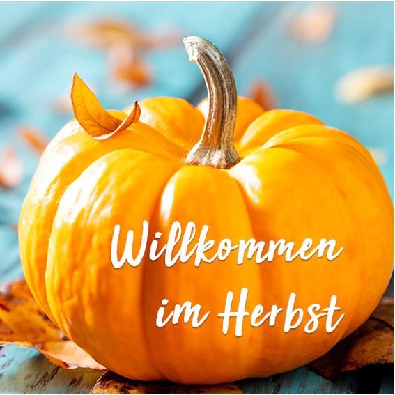 Cosmetic Gallery Herbst-Pflege